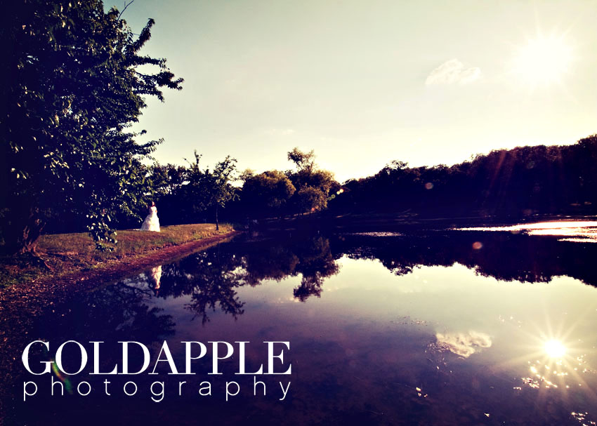 goldapple-photography-0858