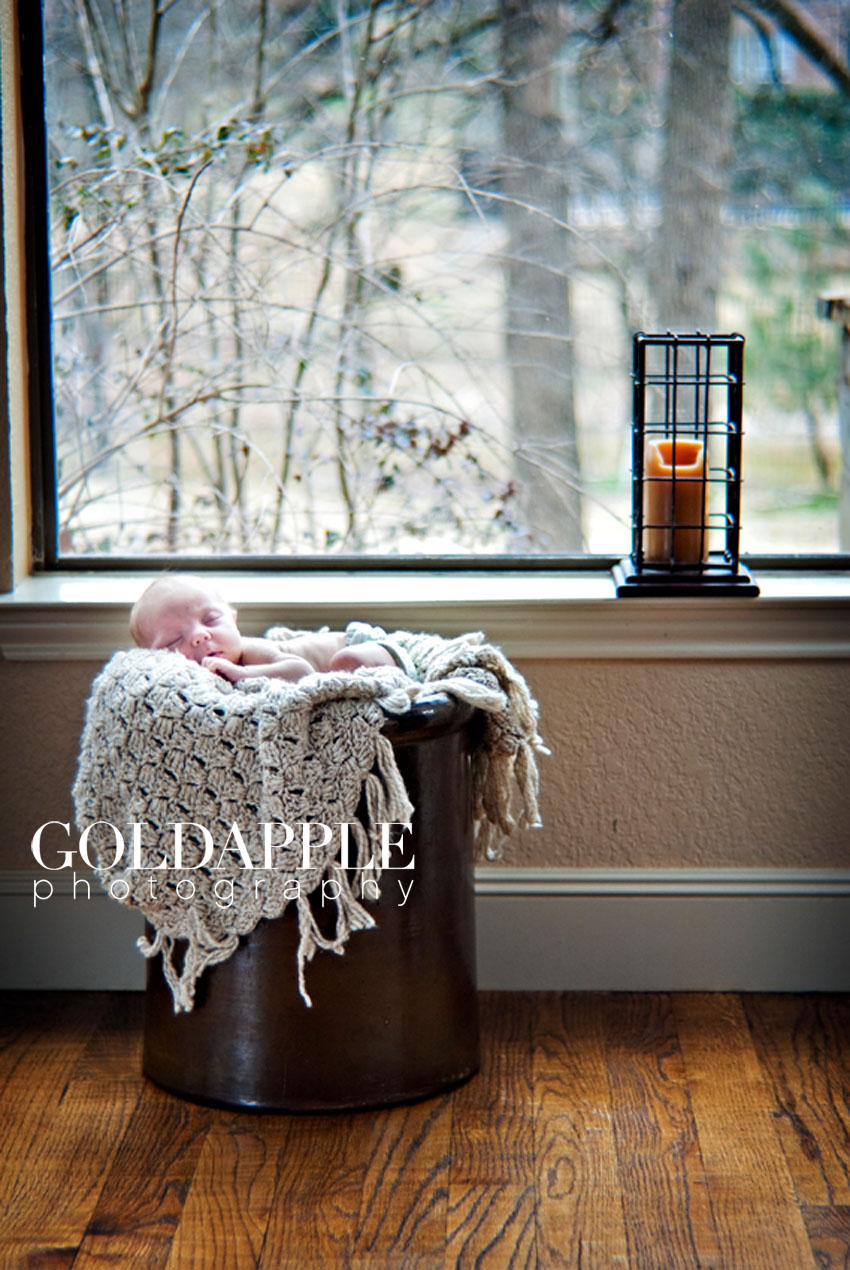 goldapple-photography-0486