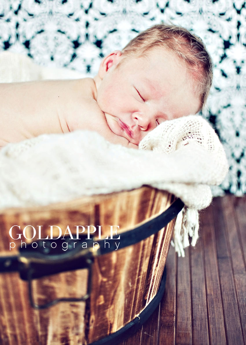 goldapple-photography-0878