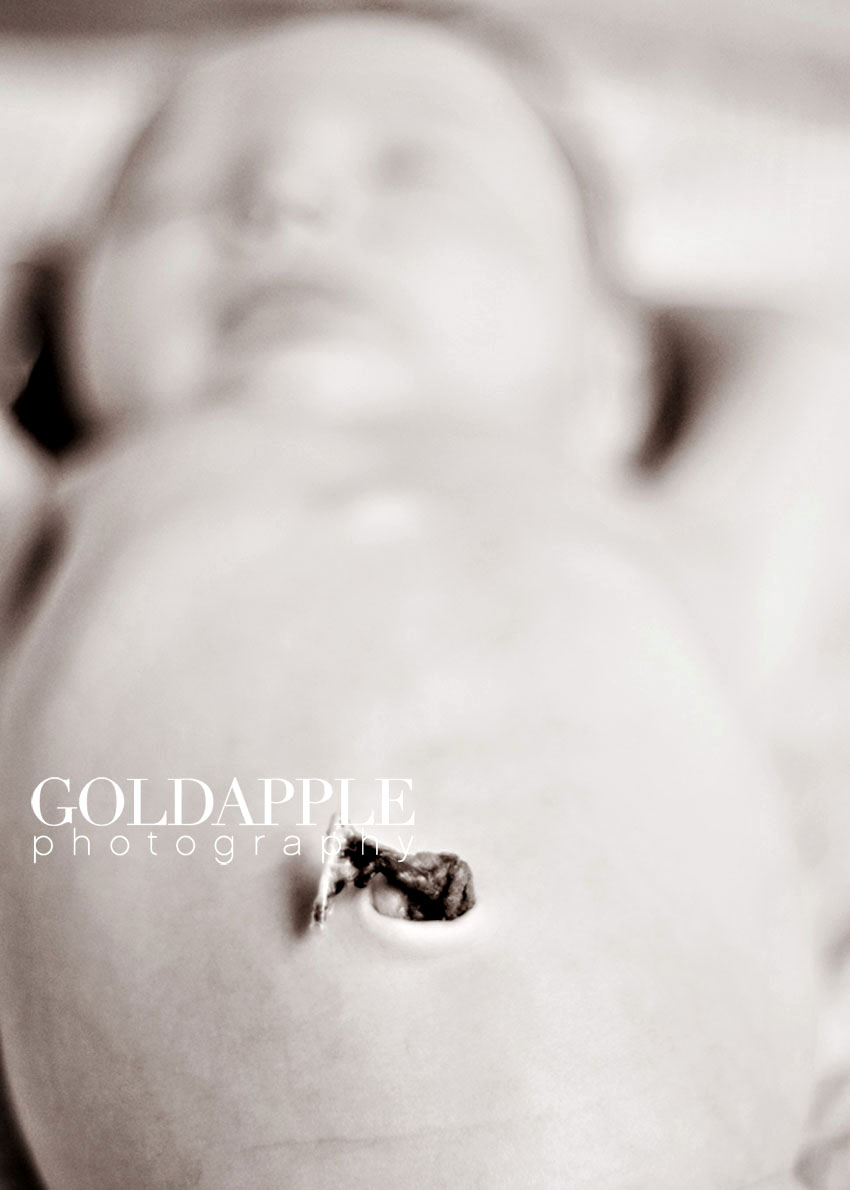 goldapple-photography-0888