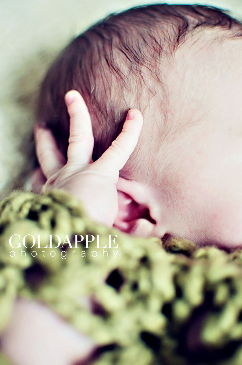 goldapple-photography-0995
