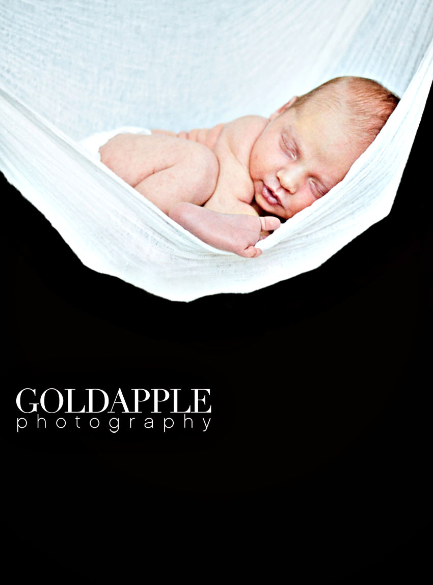 goldapple-photography-1201