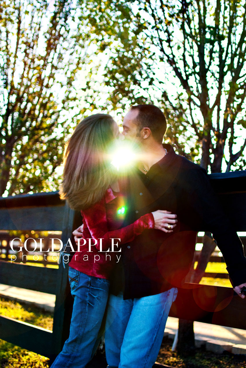 copyright goldapple photography